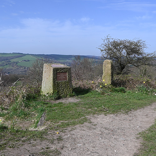 Photo of the Birley stone and Festival stone