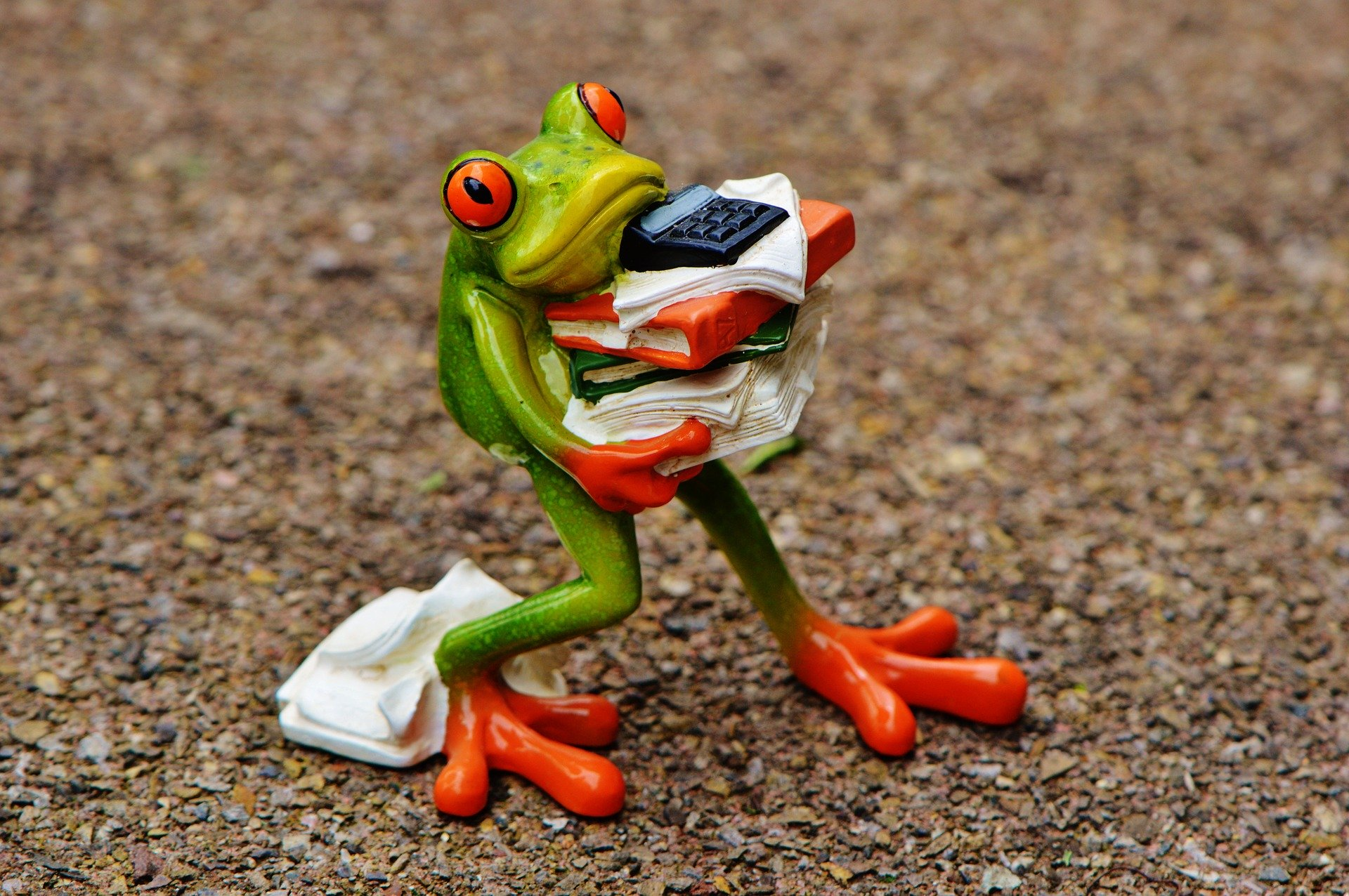 Frog carrying books