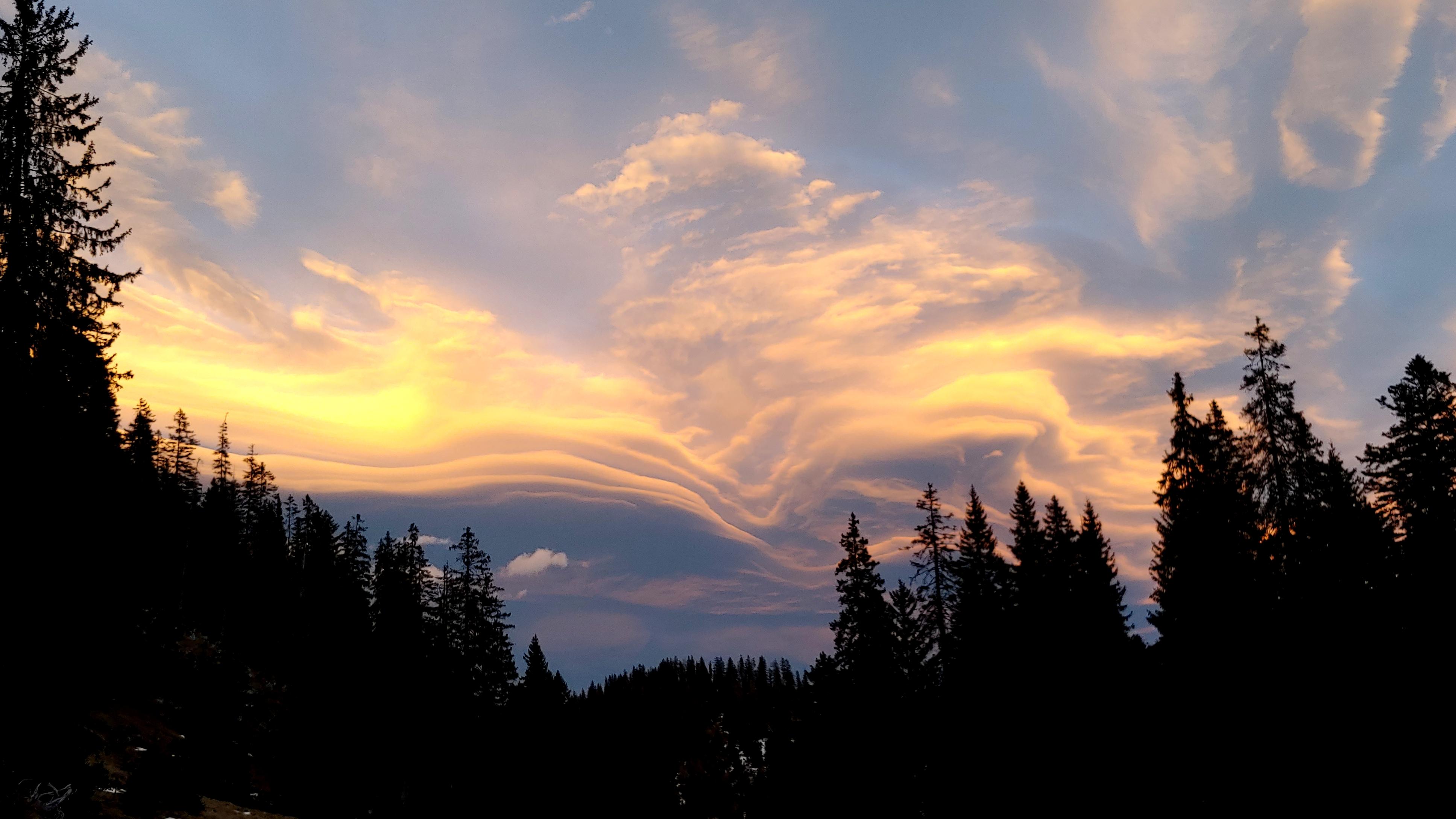 Foehn clouds