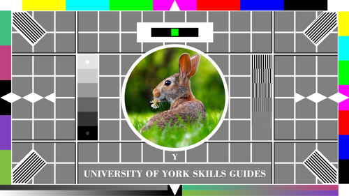Testcard with a rabbit on it