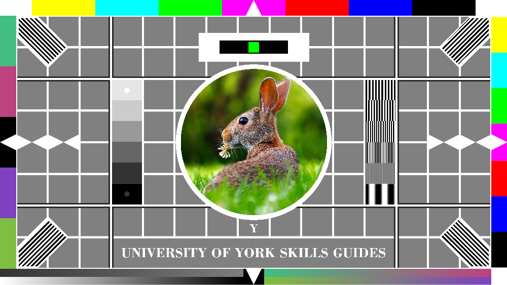 24-bit colour rabbit testcard: natural colour variation is represented in a naturalistic way