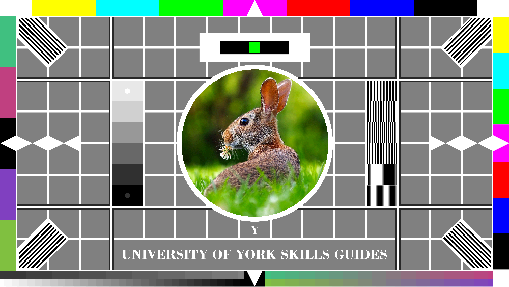 16-bit colour rabbit testcard: natural colour variation is pretty accurately reproduced but it could be more naturalistic