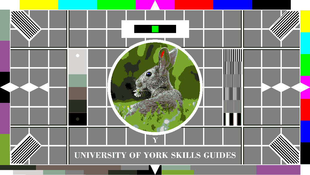 4-bit colour rabbit testcard: natural colour variation is reduced to blocks of simple colour