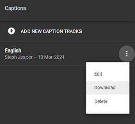 The 'Captions' side-panel in a Google Drive video file lists all the captions currently associated with that file. Each has a three-dot menu from which you can download.