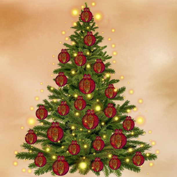 Christmas tree with red baubles and gold lights