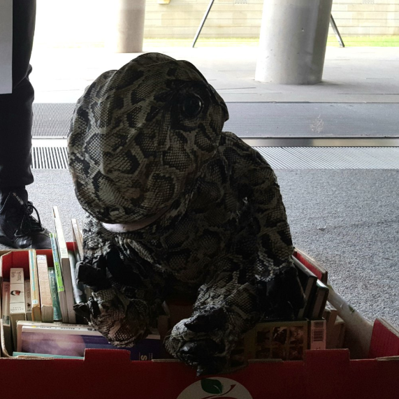 Reffie the Raptor in a box of secondhand books