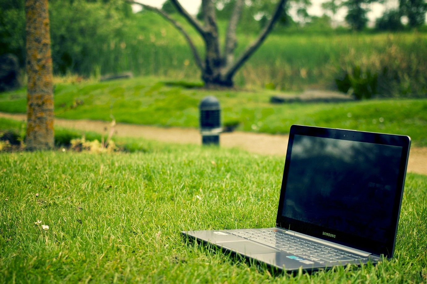 Laptop in a grassy field