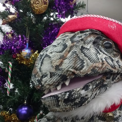 Reffie the raptor next to a Christmas tree