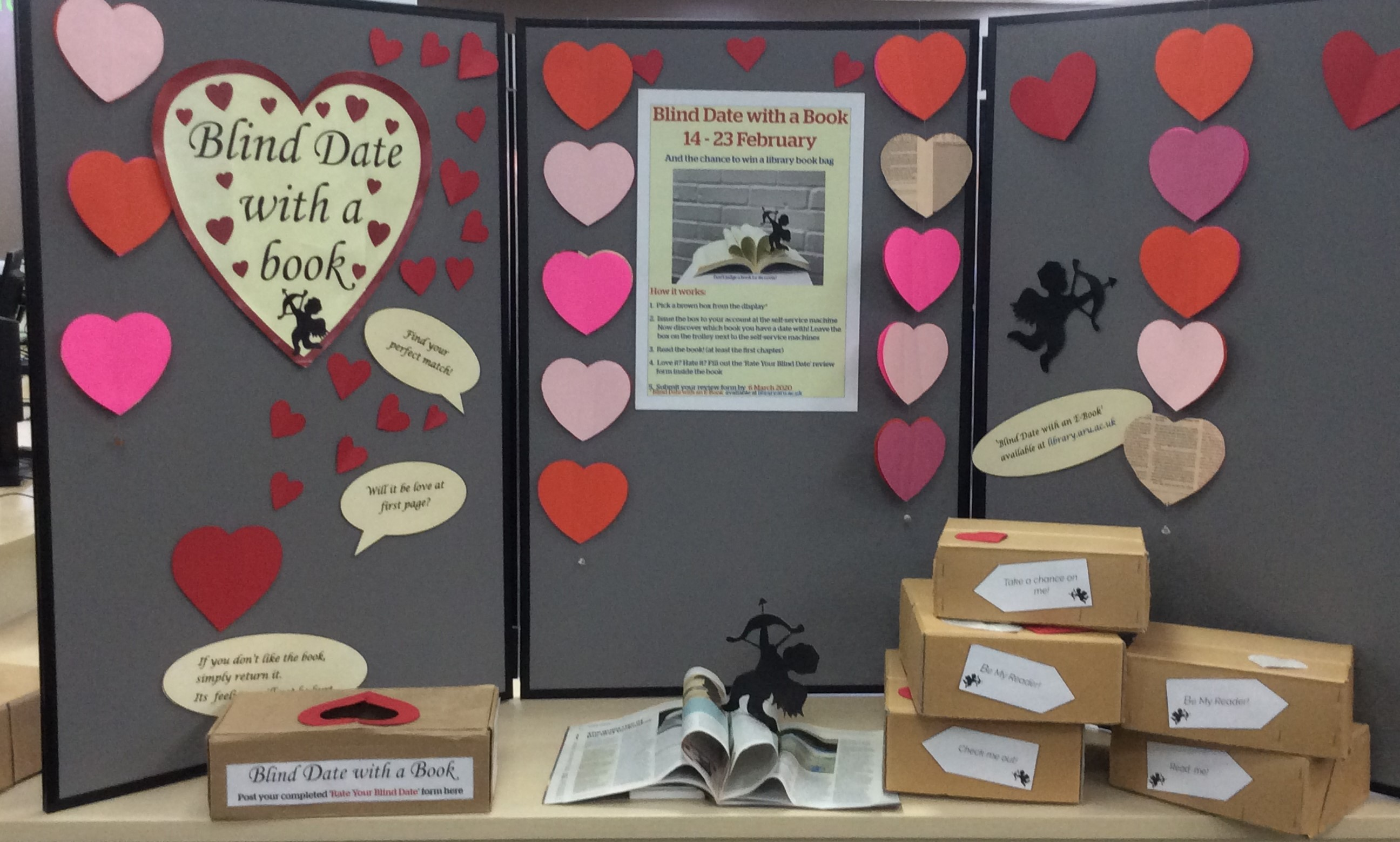Blind Date with a Book display at Cambridge site