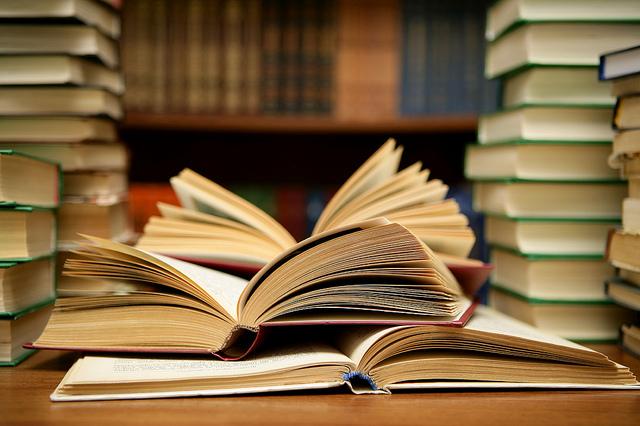 Literature based dissertation