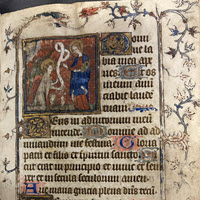 Detail of MS.F.2.21: Book of Hours (use of Paris)
