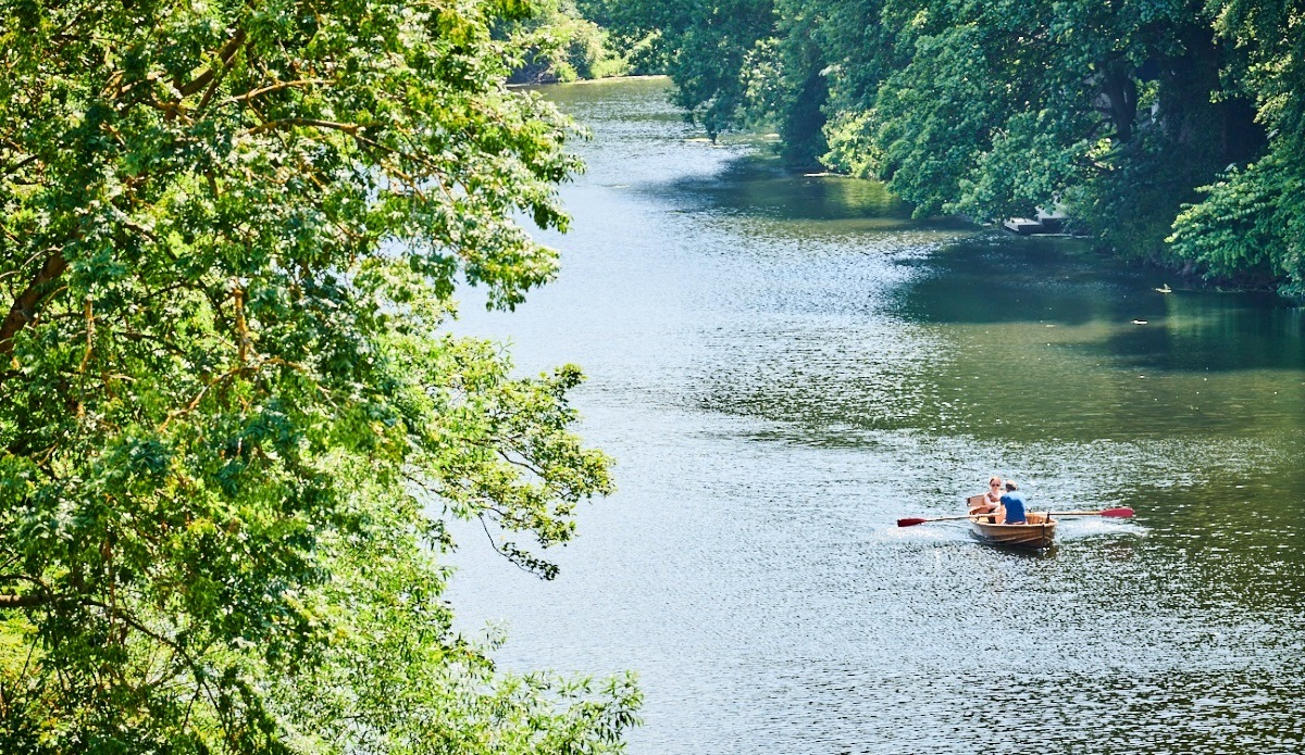 The River Wear with trees hanging over and two people in a rowing boat