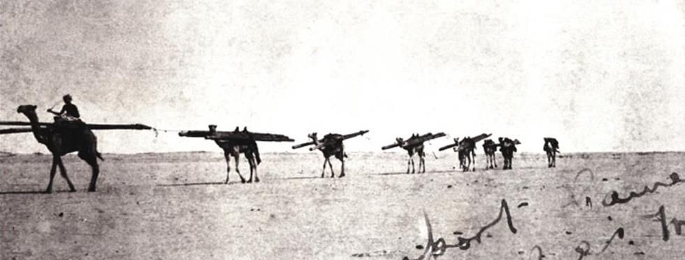 Loaded camels crossing the desert