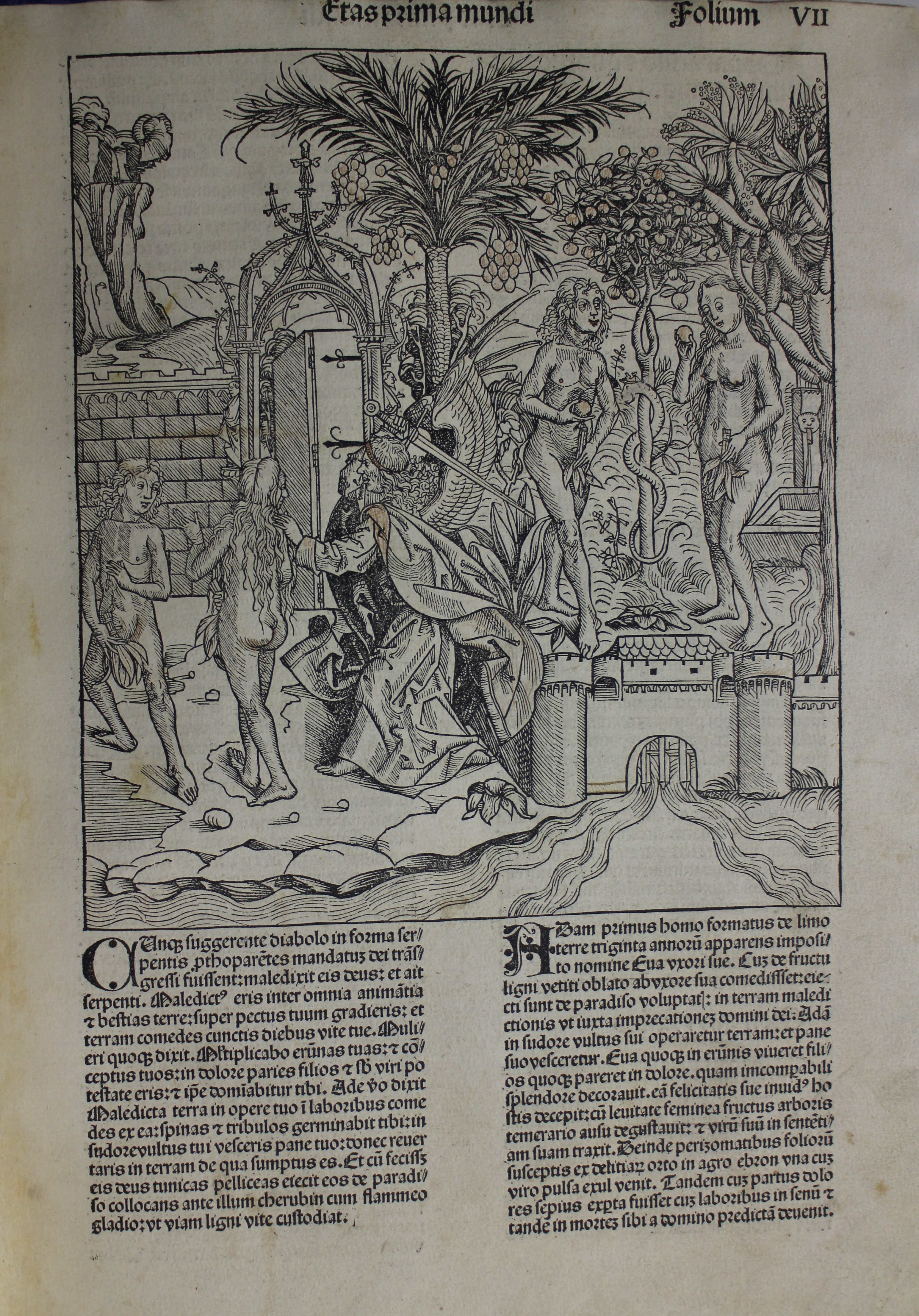 An illustration showing Adam and Eve eating the apple from the Tree of Knowledge