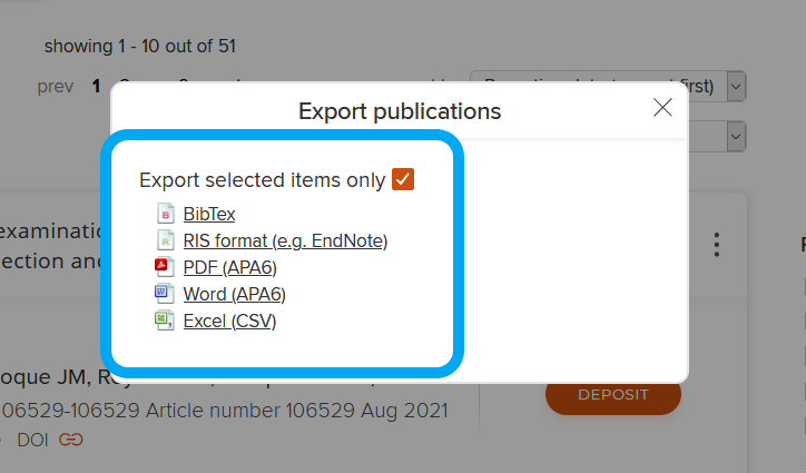 The Export Publications box showing the range of formats BibTex, RIS, PDF, Word and Excel.