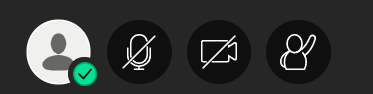 The usual icons represent microphone and webcam.