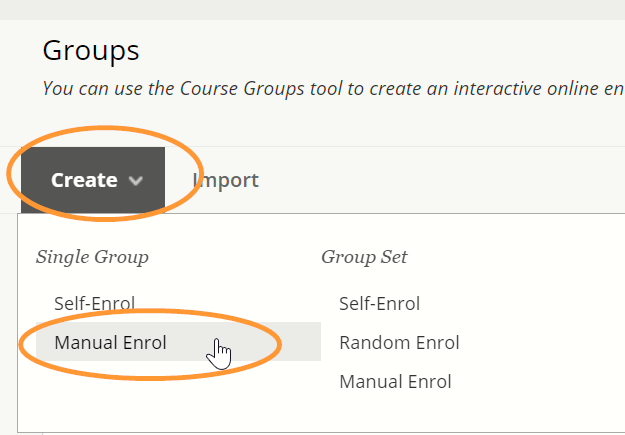 Manual enrol for a single group is the second option in the list.