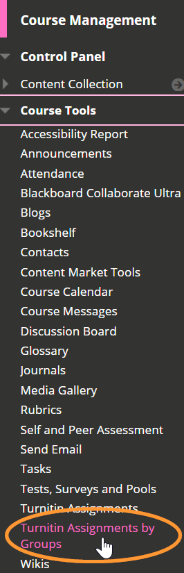 The course tools menu is listed in alphabetical order.