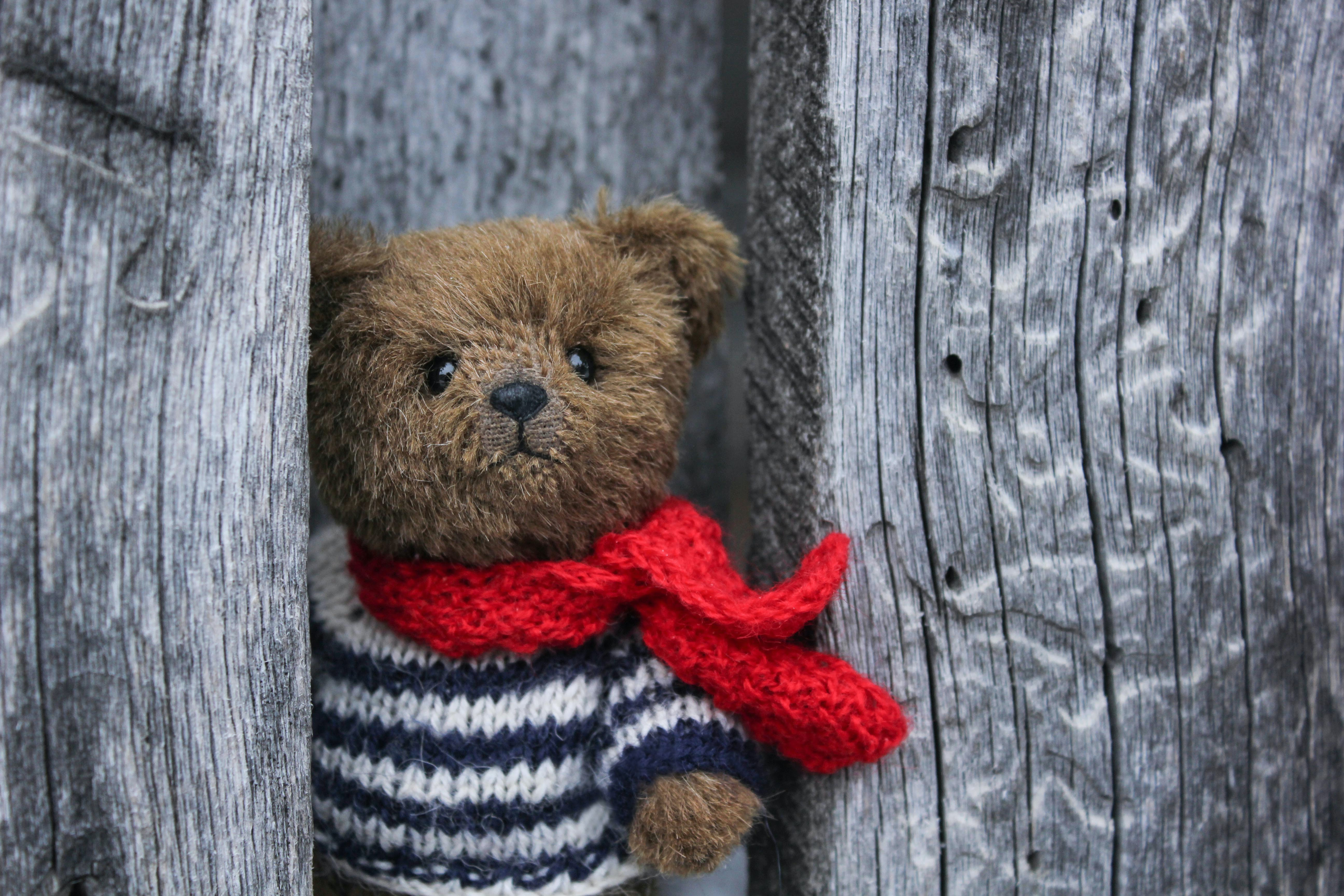 Cute teddy bear, between wooden posts, wearing a knitted blue and white striped jumper and a red scarf