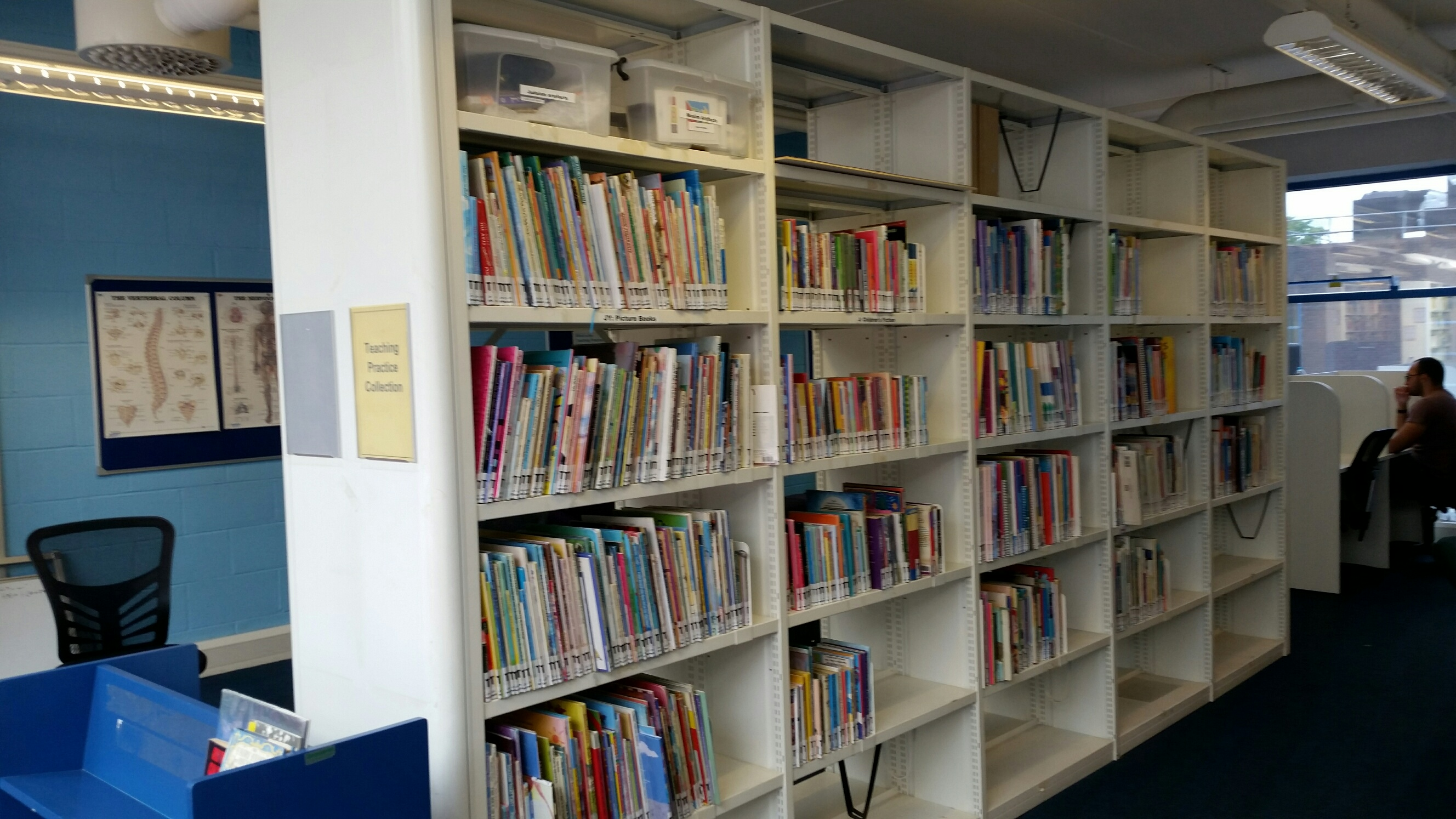 Book Shelves in the Perry Library