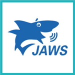 Jaws screen reader icon