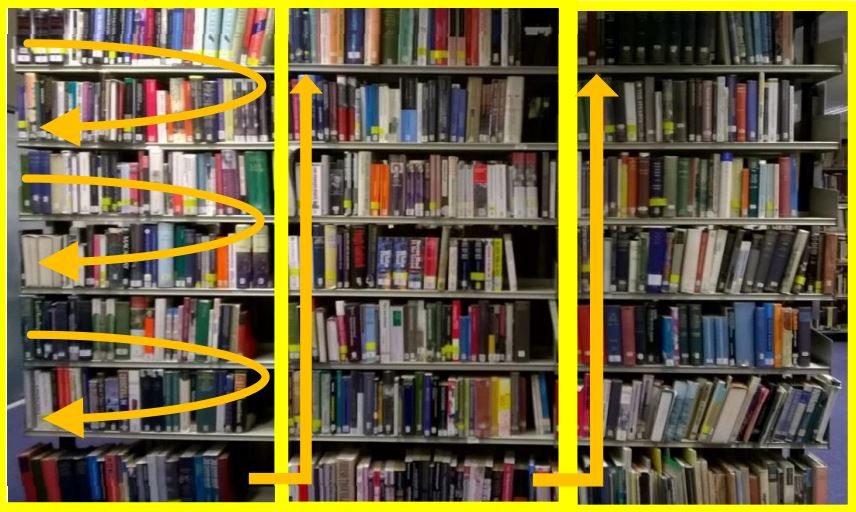 Search the shelves by going across a shelf and down, then over to the next bay and repeating the process