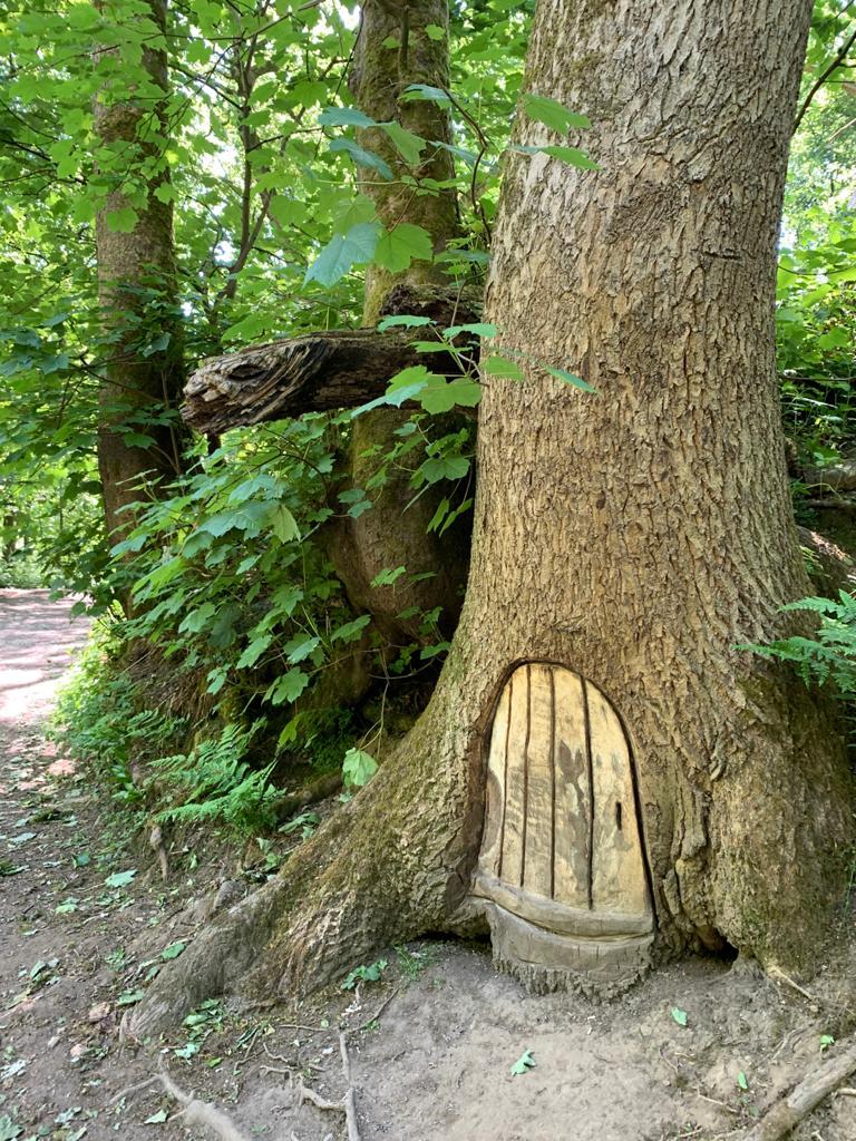 Fairy door in a tree at Borsdane Wood