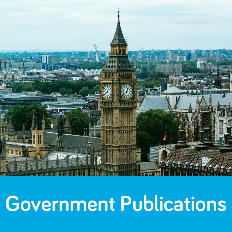 Government publications guide image link