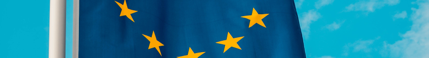 An image of a European Union flag