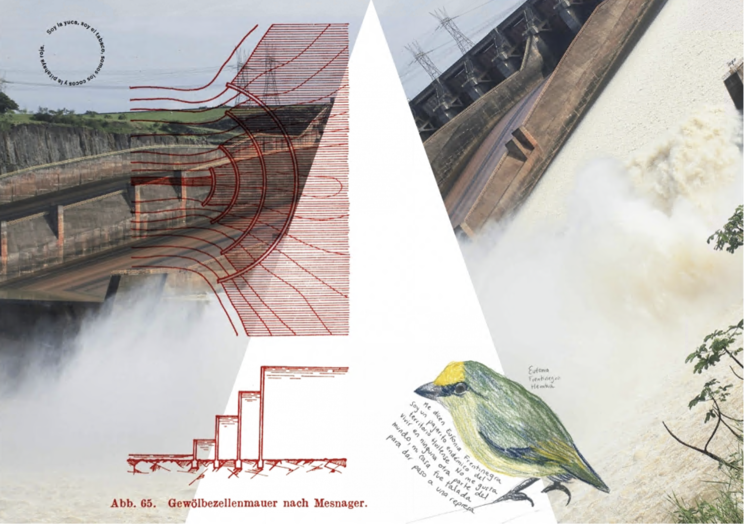 Carolina Caycedo 'Serpent River Book' (detail) 2017