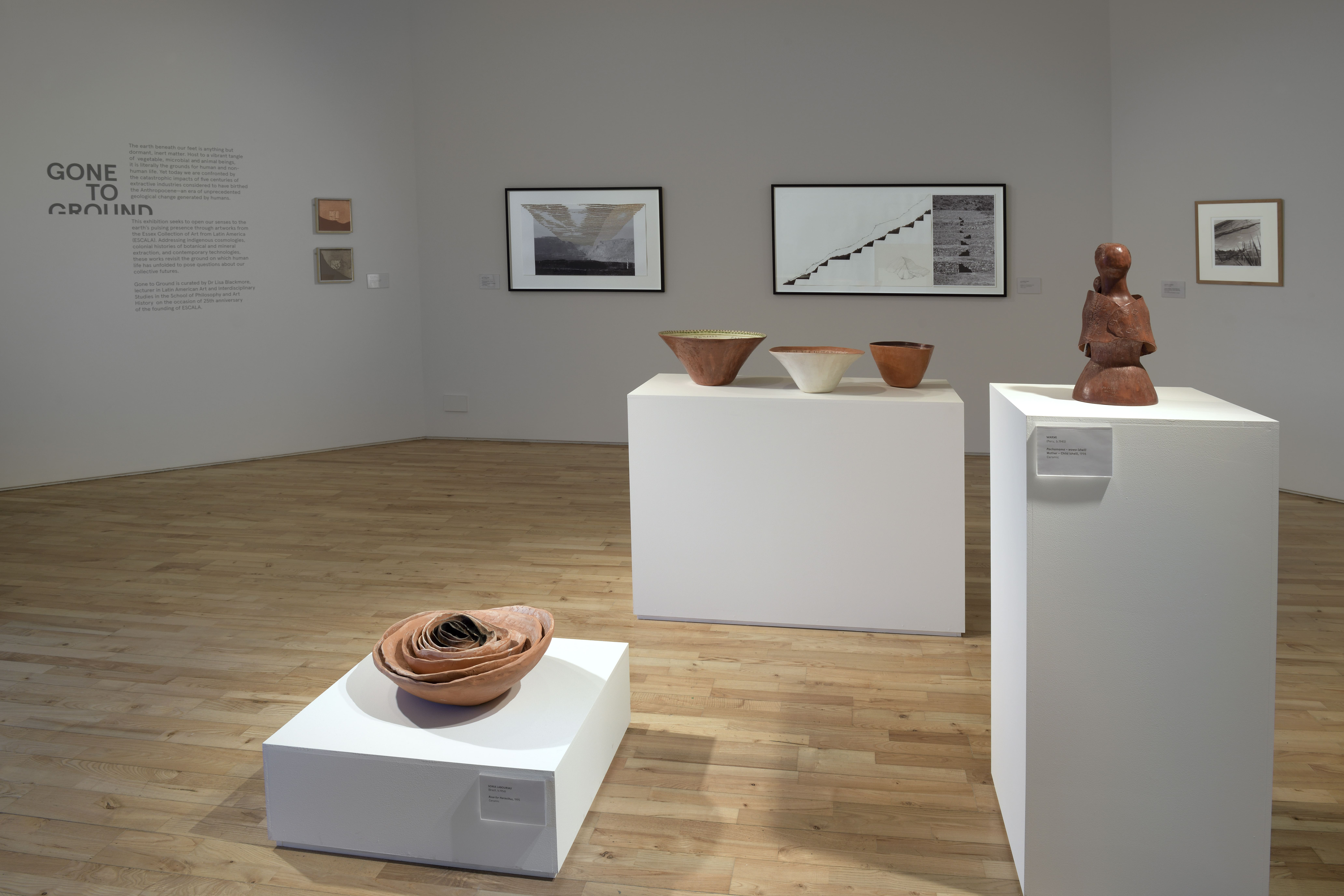 Gone to Ground exhibition at Art Exchange