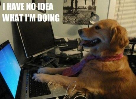 "A dog sitting in front of a computer, captioned ""I have no idea what I'm doing"""